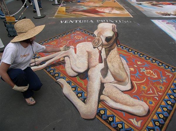 desert baby camel 3d street  art