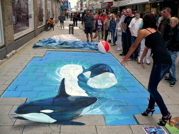 Dolphin-in-water-3D-Street-Art-Painting