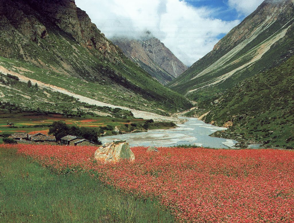 darma valley uttarakhand photos